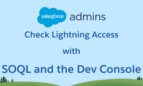 Check Lightning Permissions With SOQL and the Dev Console