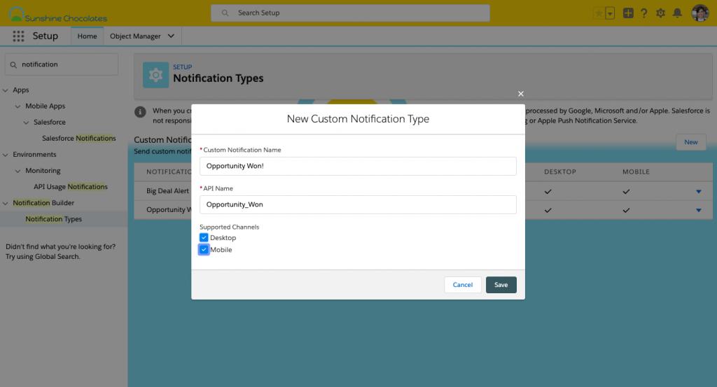 Alt text: Screenshot of Notification Builder in Setup, creating a new notification type screen
