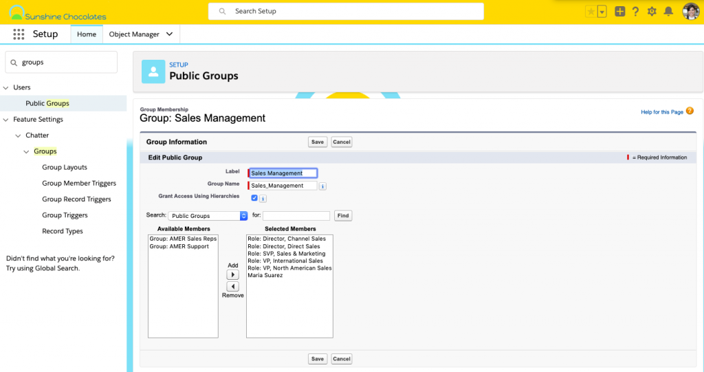 Alt text: Screenshot of Public Groups configuration in Setup.