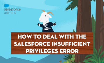 how-to-deal-with-the-salesforce-insufficient-privileges-error