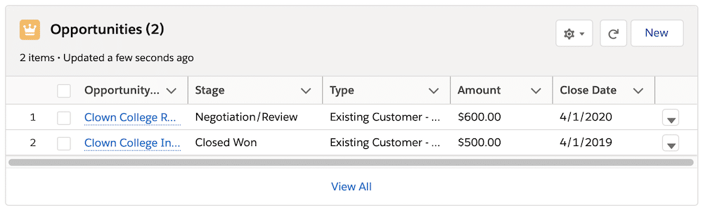 An Opportunities list view with five columns, two of which, Opportunity Name and Type, are not wide enough for the values to fully display.