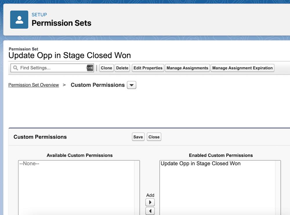 A custom permission added to a permission set.